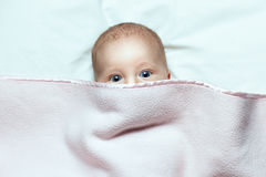Baby under a blanket Stock Photography
