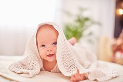 Baby under the towel. a cheerful little child looks out from under the blanket and smiles funny. lying on his stomach on their own stock photography