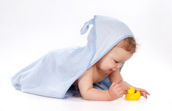 Baby under towel playing with rubber duck Stock Images