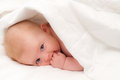 Baby Under a White Blanket. Cute Baby Under a White Blanket Royalty Free Stock Image