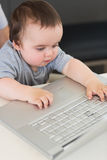 Baby using laptop at table Royalty Free Stock Images