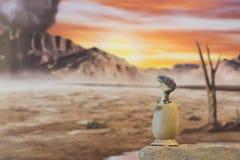 Baby Velociraptor aus dem Ei heraus lizenzfreie stockbilder