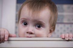 Baby in voederbak Stock Fotografie