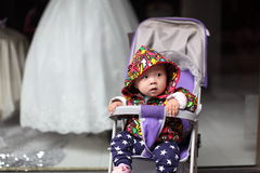 Baby vor Heiratsschleier Stockfoto