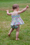 Baby walking Stock Photography