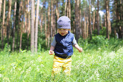 Baby walking in forest against flowers Stock Photos