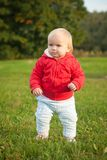 Baby walking on the grass in park Stock Photography