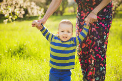 Baby walking in green park holding hands of mother. Happy little child playing outside with parents. first steps of infant. beautiful boy in spring blooming royalty free stock image