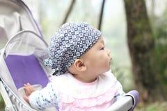 Baby in Wandelwagen Stock Afbeeldingen