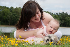 Baby want's to stroke the puppy royalty free stock images