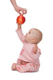 Baby wants an apple!. Woman's hand gives an apple to the baby - isolated Stock Photo