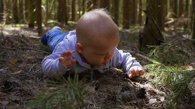 The baby was lost in the woods stock video footage