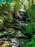 Baby-Wasserfälle stockfotografie