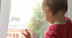 Baby wat betreft venster thuis stock video