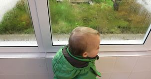 Baby is watching how plants and moss grow in a greenhouse. Early development education concept stock video footage