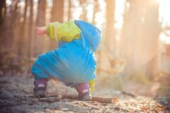 Baby Wearing Blue and Green Rain Coat Picking Brown Dead Tree Branch during Daytime Royalty Free Stock Photos