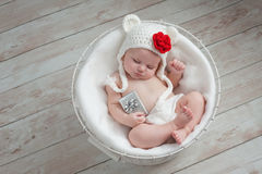Baby Wearing a Christmas Bear Hat Stock Image