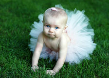 Baby Wearing Pink Tutu - horizontal Royalty Free Stock Photography