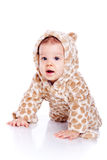 Baby wearing tiger suit Royalty Free Stock Photography