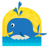 Baby Whale Stock Photo