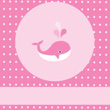 Baby Whale Royalty Free Stock Images