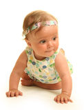 Baby on white Royalty Free Stock Image