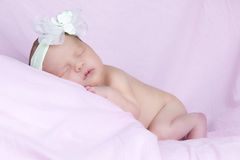 Baby with white flower headband Stock Photos