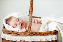 Baby in wicker basket. Stock Image