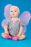Baby with wings sitting Royalty Free Stock Image