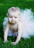 Baby With Tutu - Vertical Royalty Free Stock Photo