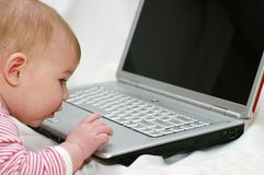 Baby working on Laptop Royalty Free Stock Images