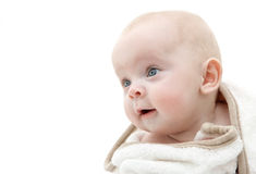 Baby wrapped in a bath towel. Portrait of a baby wrapped in a white bath towel Stock Image