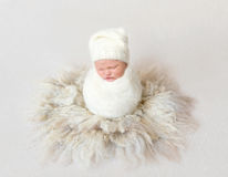 Baby wrapped in blanket sitting in cocoon Stock Photos