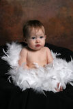 Baby wrapped in Feathers royalty free stock images