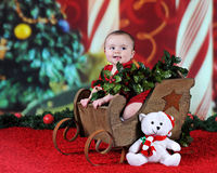 Baby's Sleigh Ride Stock Images