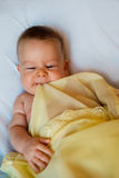 Baby in yellow blanket. On a white background Stock Image