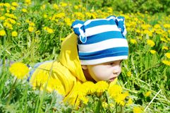 Baby in yellow jacket creeps among dandelions Royalty Free Stock Image