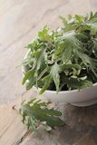 Baby young kale leaf salad Royalty Free Stock Image