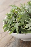 Baby young kale leaf salad Royalty Free Stock Photo