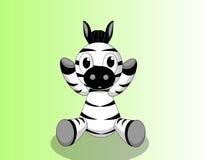 Baby zebra Stock Image