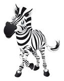 Baby Zebra vector illustration