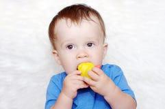 Baby zerfrisst Gummiente Stockbilder