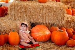 baby2 pumpking Стоковая Фотография