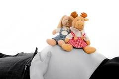 Babybauch mit Plüschtieren Stockbilder
