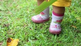 Babybenen die op het Gras lopen stock footage
