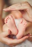 Babybenen. Pasgeboren voeten in de handen van haar moeder Stock Foto's
