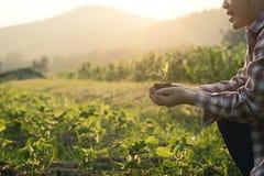 Babybetriebslandwirtschaftskonzept an Hand ernähren Stockbild