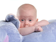 Babyboy Stock Photos