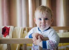 Babyboy royalty-vrije stock afbeeldingen