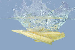 Babycorn fresco que salpica en el agua imágenes de archivo libres de regalías